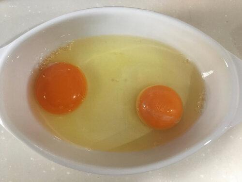 卵 大きさ比較